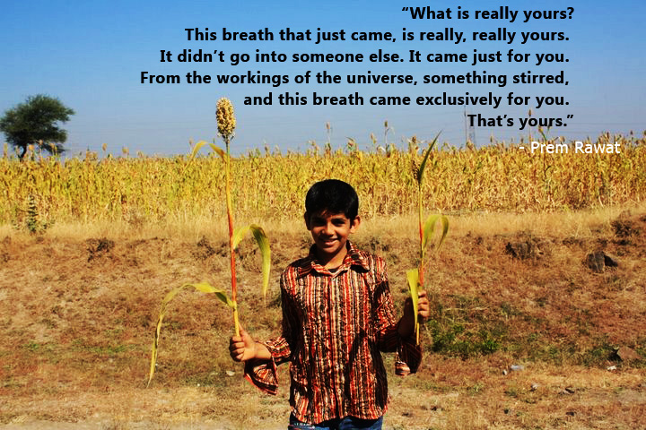 boy,farm,Prem Rawat,quote