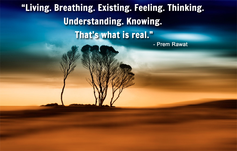 tree,landscape,Prem Rawat,quote