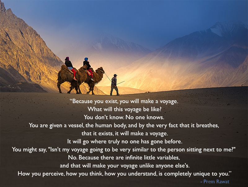 mountain camel,Prem Rawat,quote