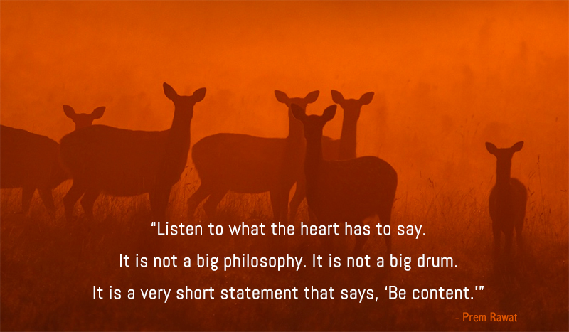 deer,Prem Rawat,quote