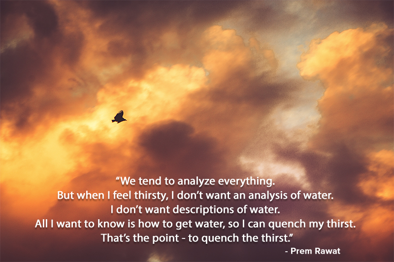 flying bird,Prem Rawat,quote