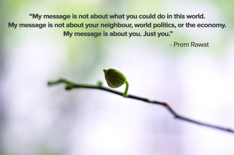 bud,Prem Rawat,quote