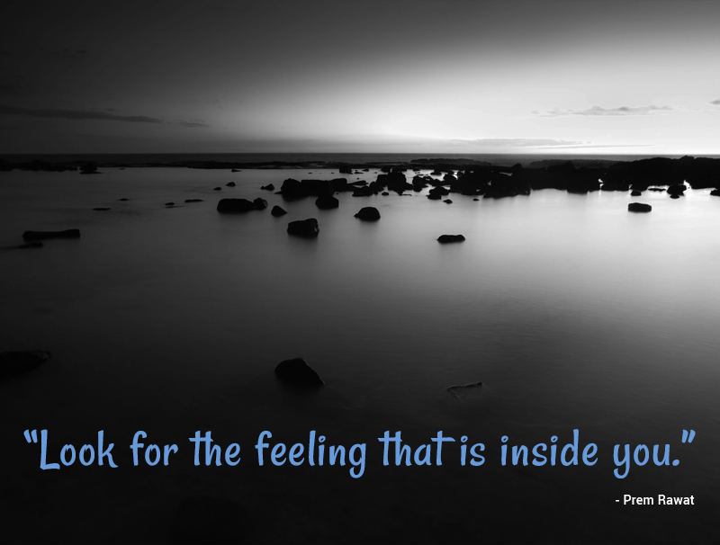 stillness,Prem Rawat,quote
