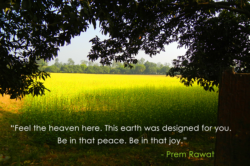 farming,Prem Rawat,quote