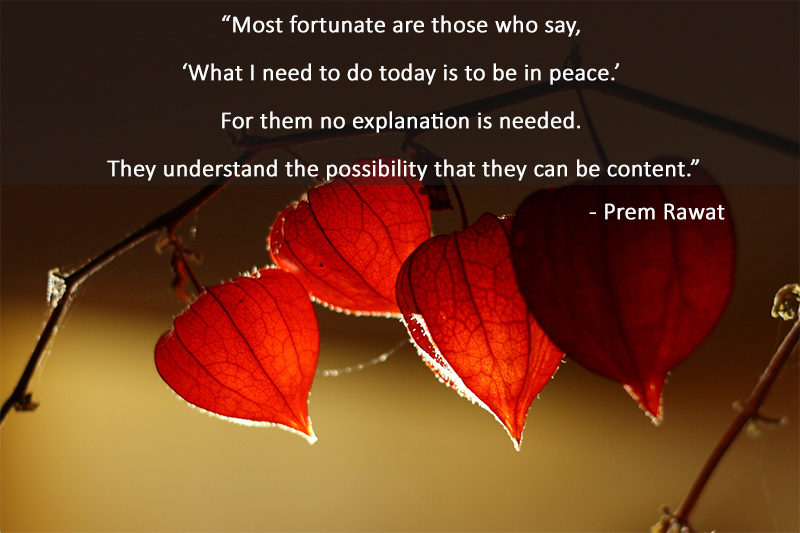 red leaf,Prem Rawat,quote