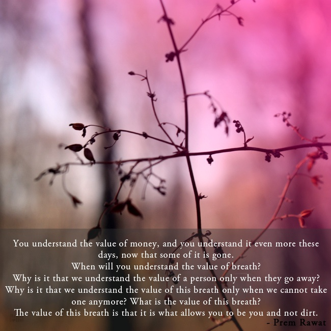 macro,bush,Prem Rawat,quote