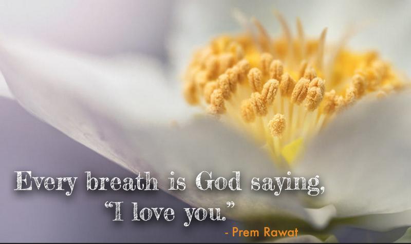 pollen, stamen,Prem Rawat,quote