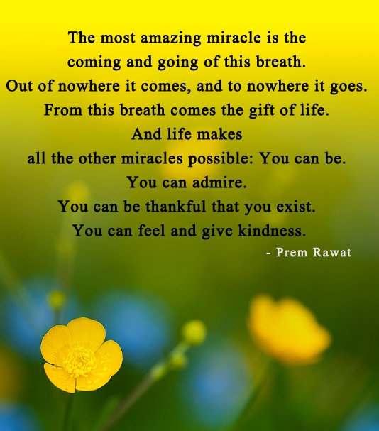 Prem Rawat Quote Of The Day: The Most Amazing Miracle Is The Coming And…