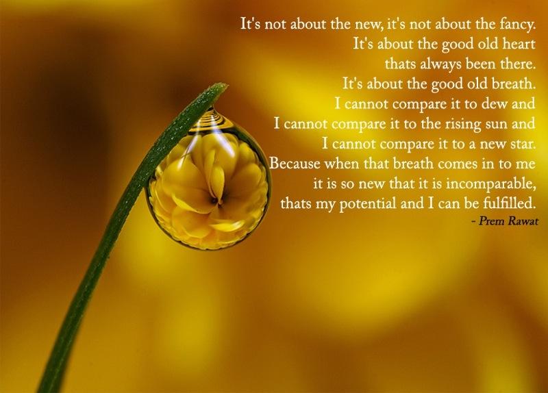 drop,macro,Prem Rawat,quote