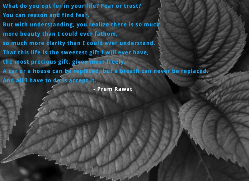 leaves,Prem Rawat,quote