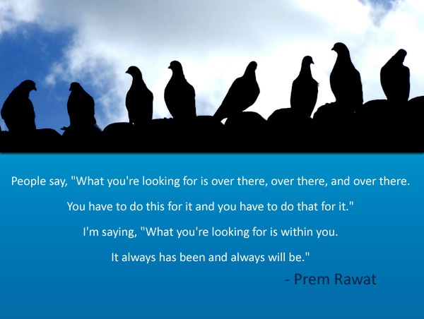 birds sitting,Prem Rawat,quote