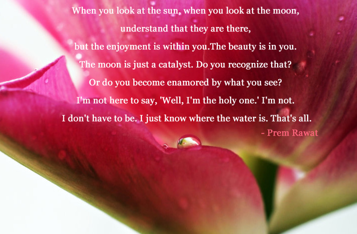petal,macro,Prem Rawat,quote