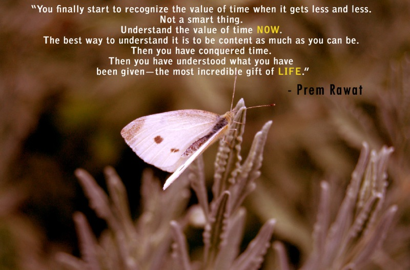 butterfly,Prem Rawat,quote