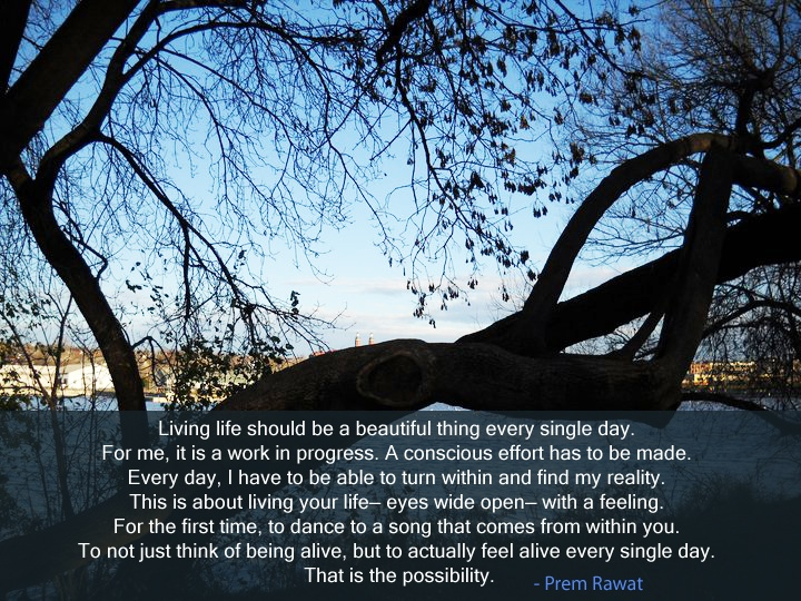 tree,bark,Prem Rawat,quote