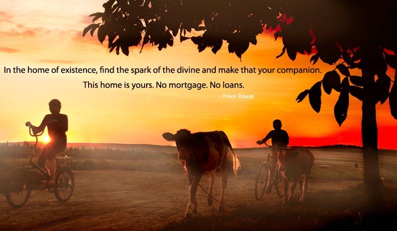 cow,farmer,tree,Prem Rawat,quote