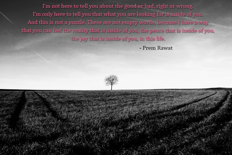 lonely tree,open field,Prem Rawat,quote
