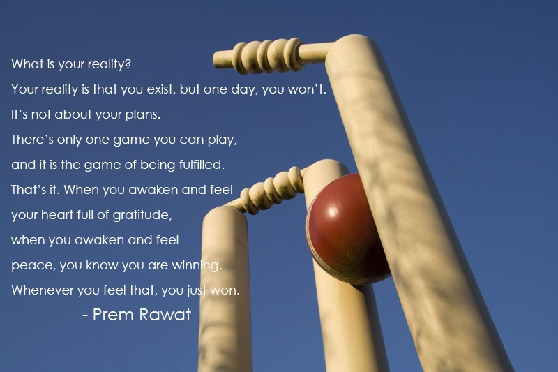 wicket,stump,game,sport,Prem Rawat,quote