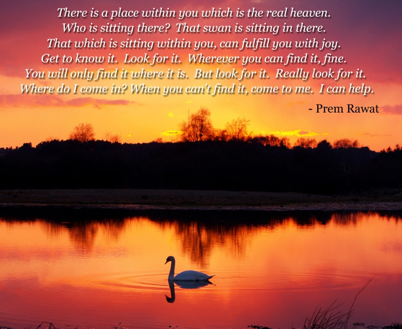 serene lake,swan,Prem Rawat,quote