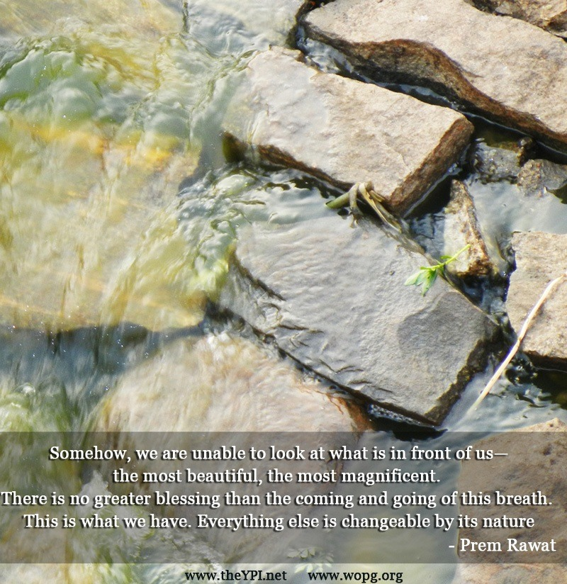 rocks,water,Prem Rawat,quote