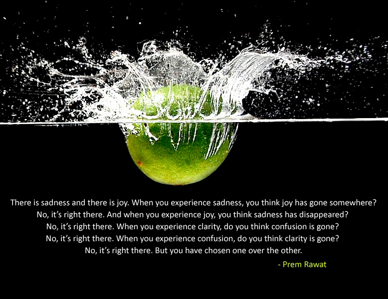 lemon,splashing,Prem Rawat,quote