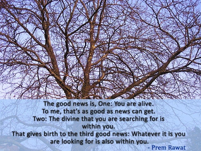 dry tree,Prem Rawat,quote