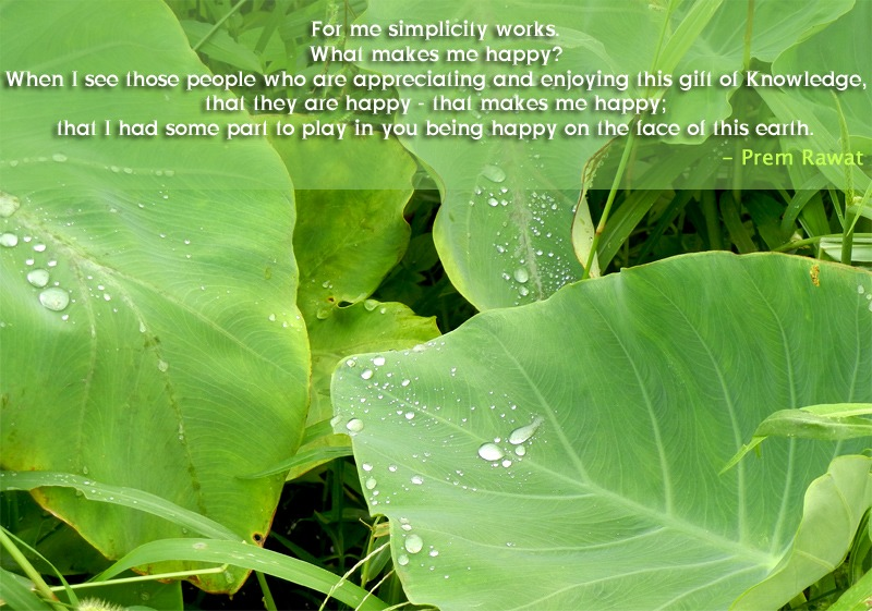 green leaves,drops,Prem Rawat,quote