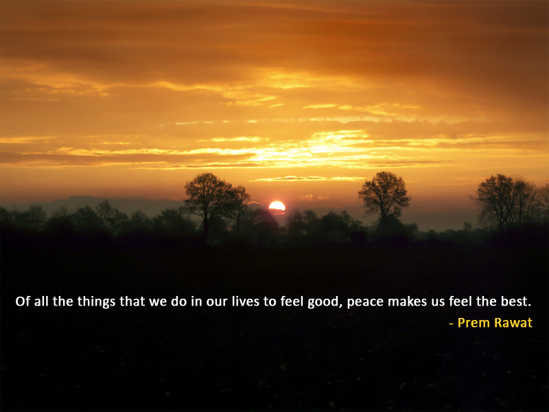 sunset,tree,Prem Rawat,quote