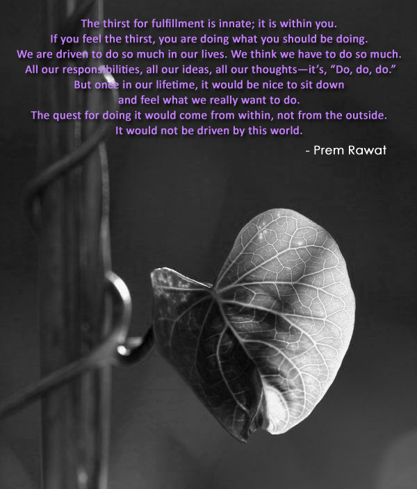leaf closeup,Prem Rawat,quote