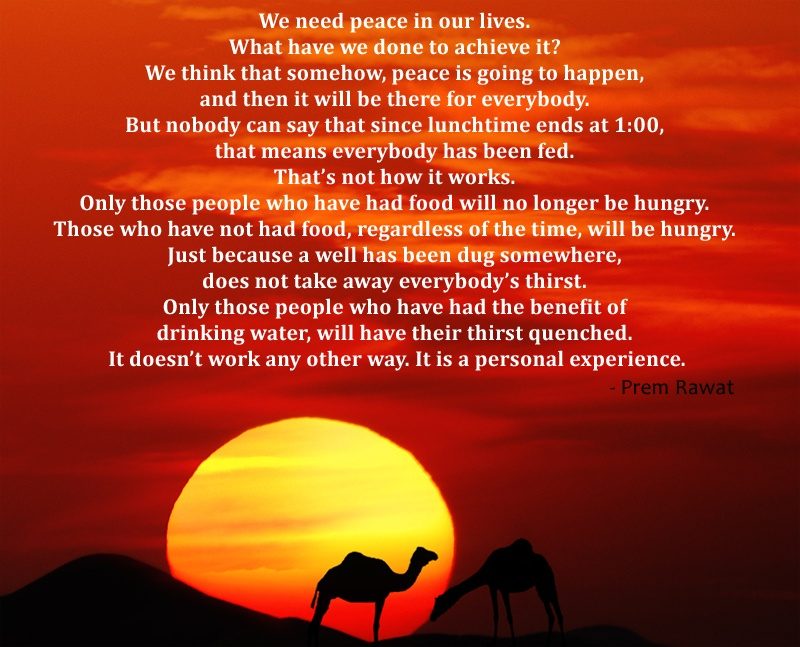 camel,sunset,Prem Rawat,quote
