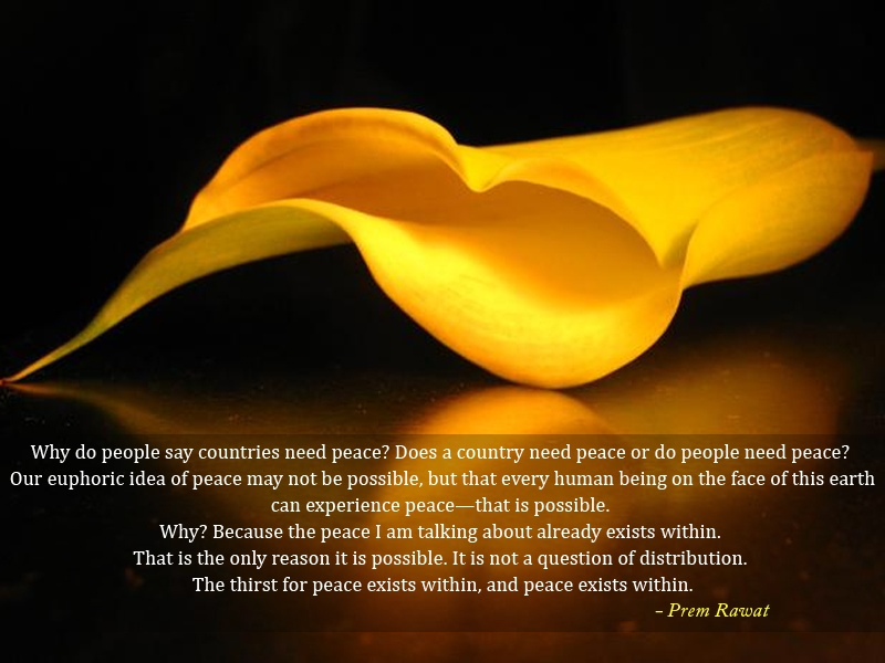 yellow petal,Prem Rawat,quote