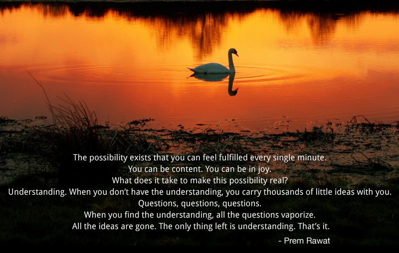 swan,Prem Rawat,quote