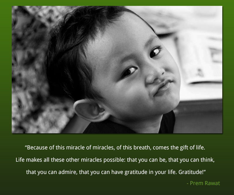 boy,smile,Prem Rawat,quote
