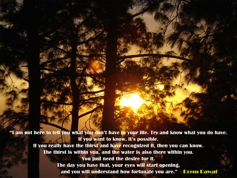 tree,evening,sunset,Prem Rawat,quote
