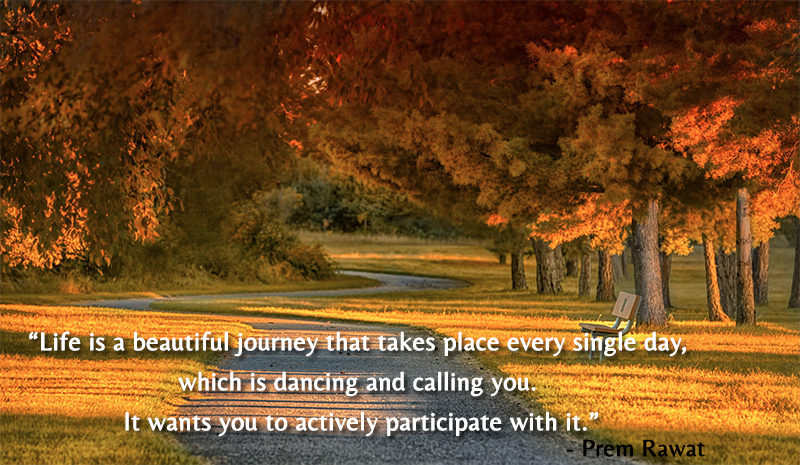 park,bench,Prem Rawat,quote