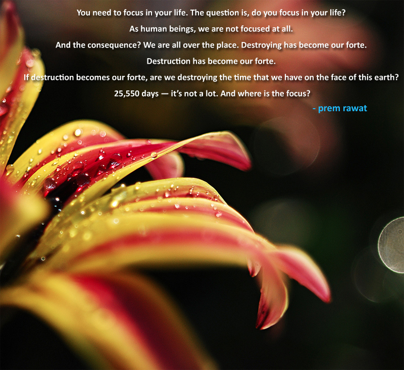 petals,Prem Rawat at Washington DC - 2012,quote
