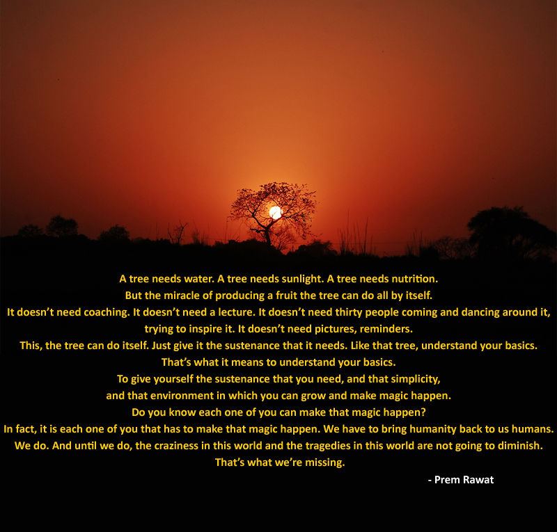 distant dry tree,sunset,Prem Rawat at Denver, US - 2012,quote