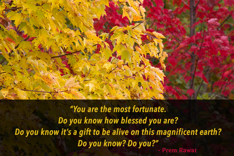 autumn,Prem Rawat,quote