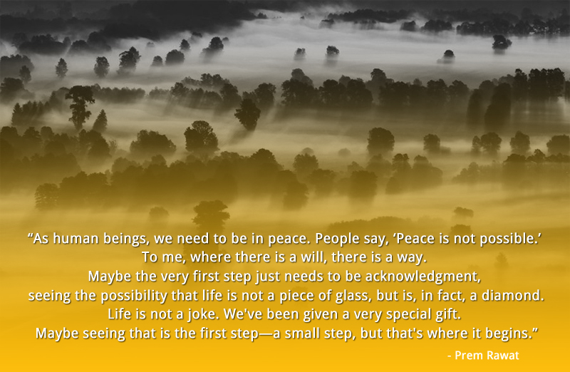 tree,mystic,fog,valley,Prem Rawat,quote