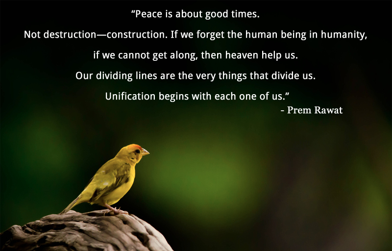 bird,Prem Rawat,quote