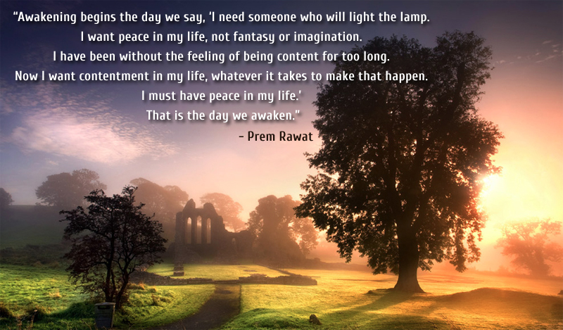 trees,morning,Prem Rawat,quote