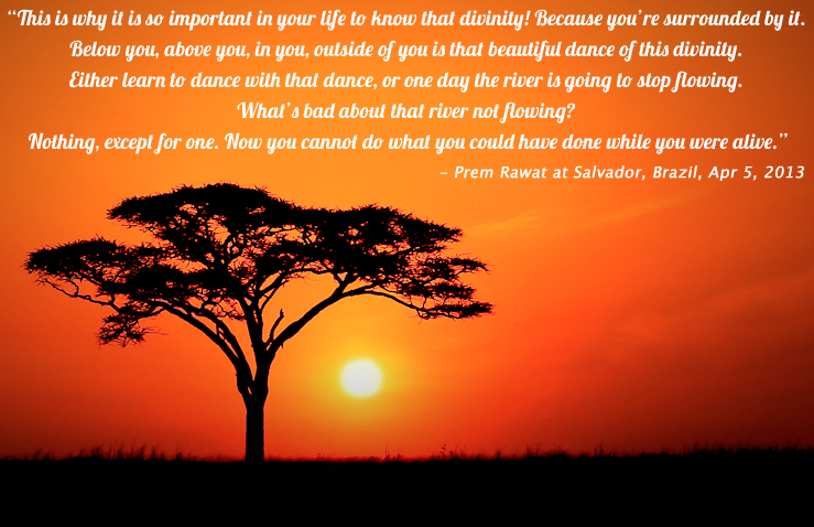 tree,sunset,Prem Rawat at Salvador, Brazil, Apr 5, 2013,quote