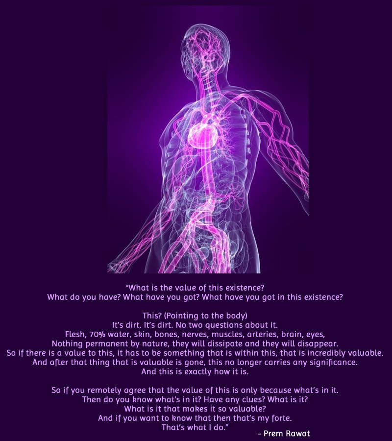 nervous system,human body,Prem Rawat,quote