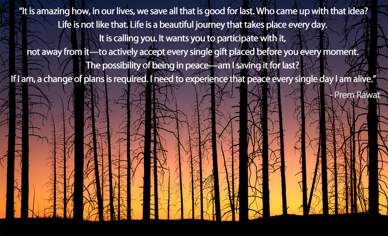 tall trees,Prem Rawat,quote