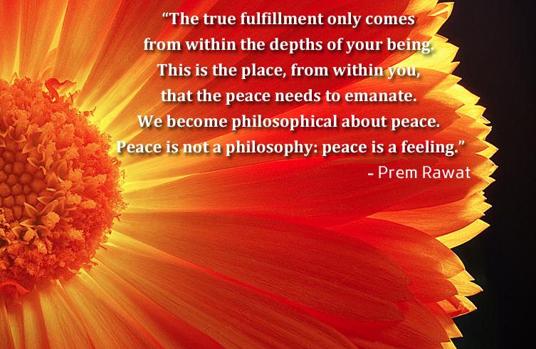 yellow,flower,Prem Rawat,quote