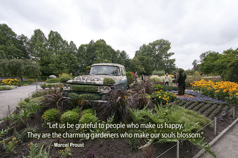 car,garden,green,Marcel Proust,quote