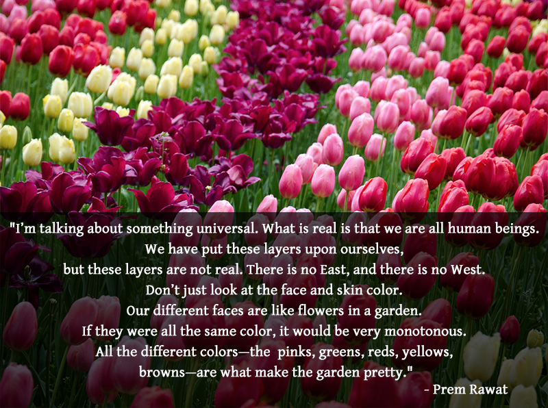 assorted flowers,Prem Rawat,quote