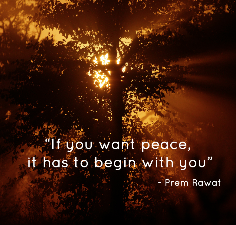 tree shadow,Prem Rawat,quote
