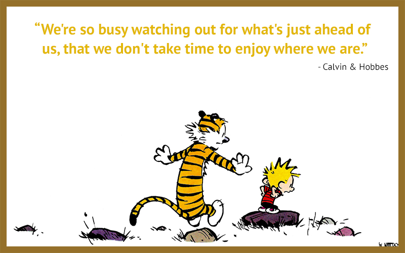 carricature,Calvin & Hobbes,quote