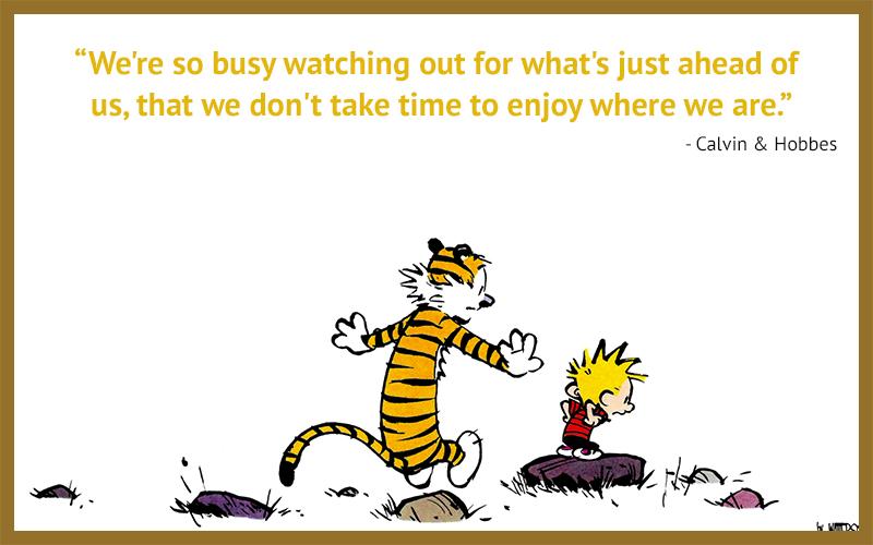 carricature,Calvin & Hobbes,quote