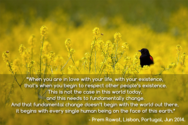 black bird,Prem Rawat, Lisbon, Portugal, Jun 2014,quote
